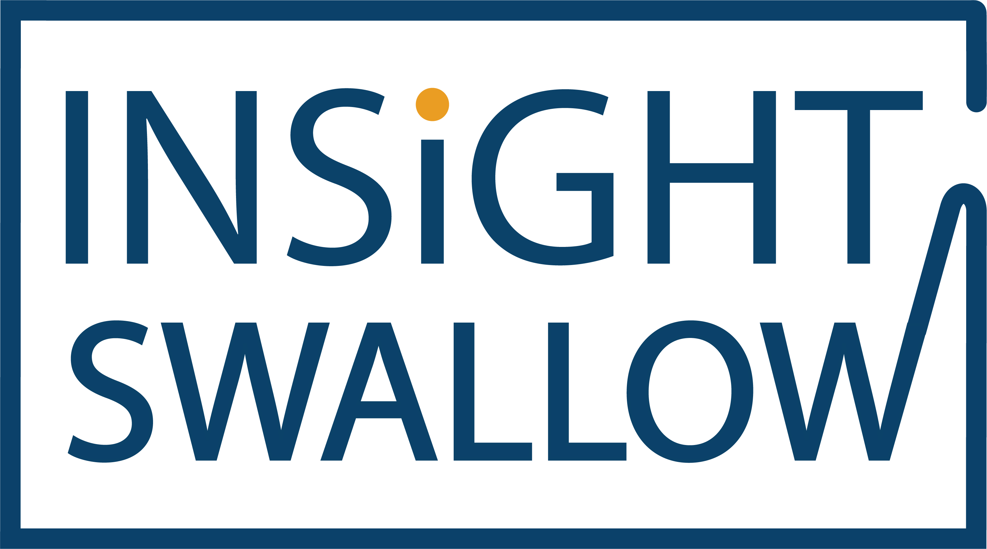 Insight Swallow